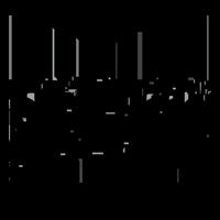 New Star logo