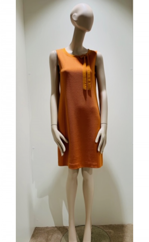 Dress orange logo